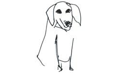 A Slightly Isolated Dog%27s Logo